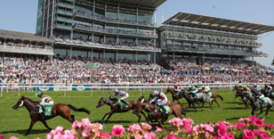 YORK RACECOURSE OFFERS WEATHER WATCHING SERVICE